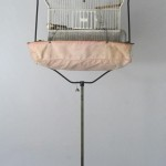 Antique Bird Cage Stand