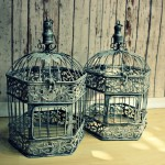 Antique Style Bird Cages
