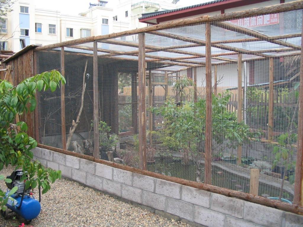 Bird Aviary Building Plans