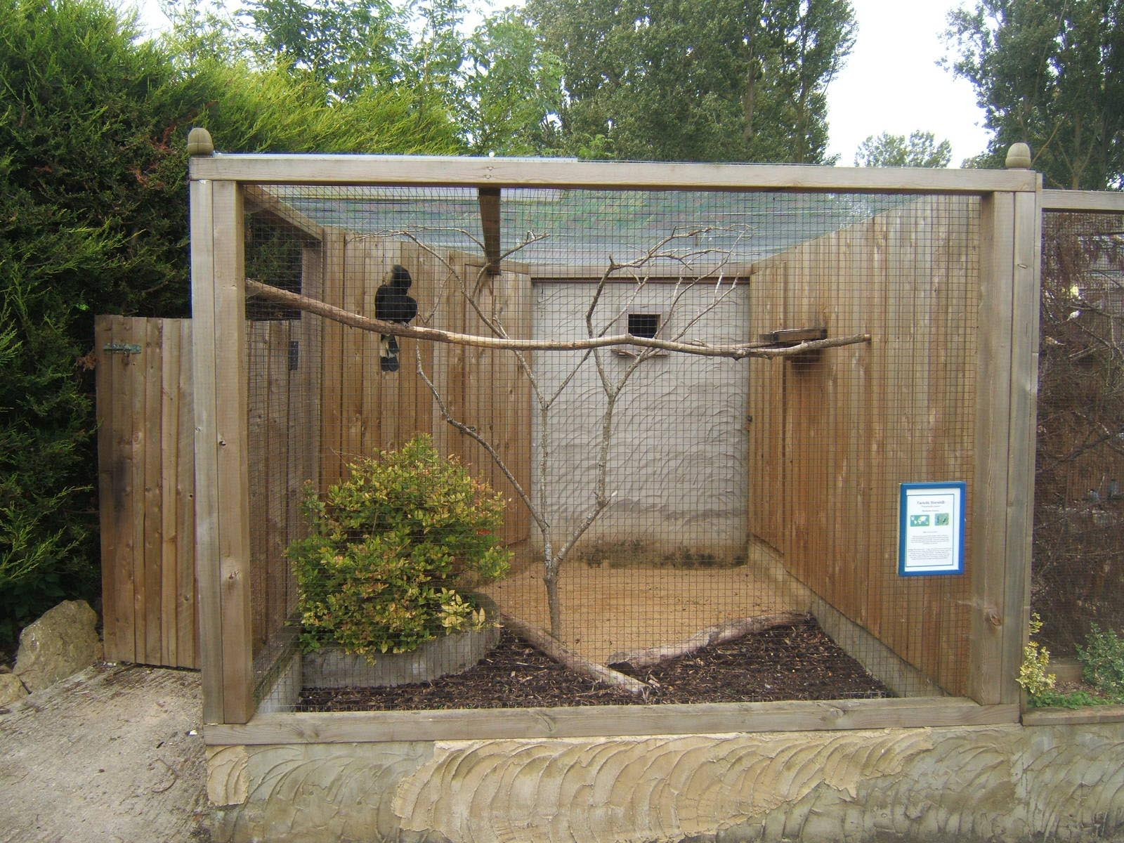Bird Aviary Design Plans