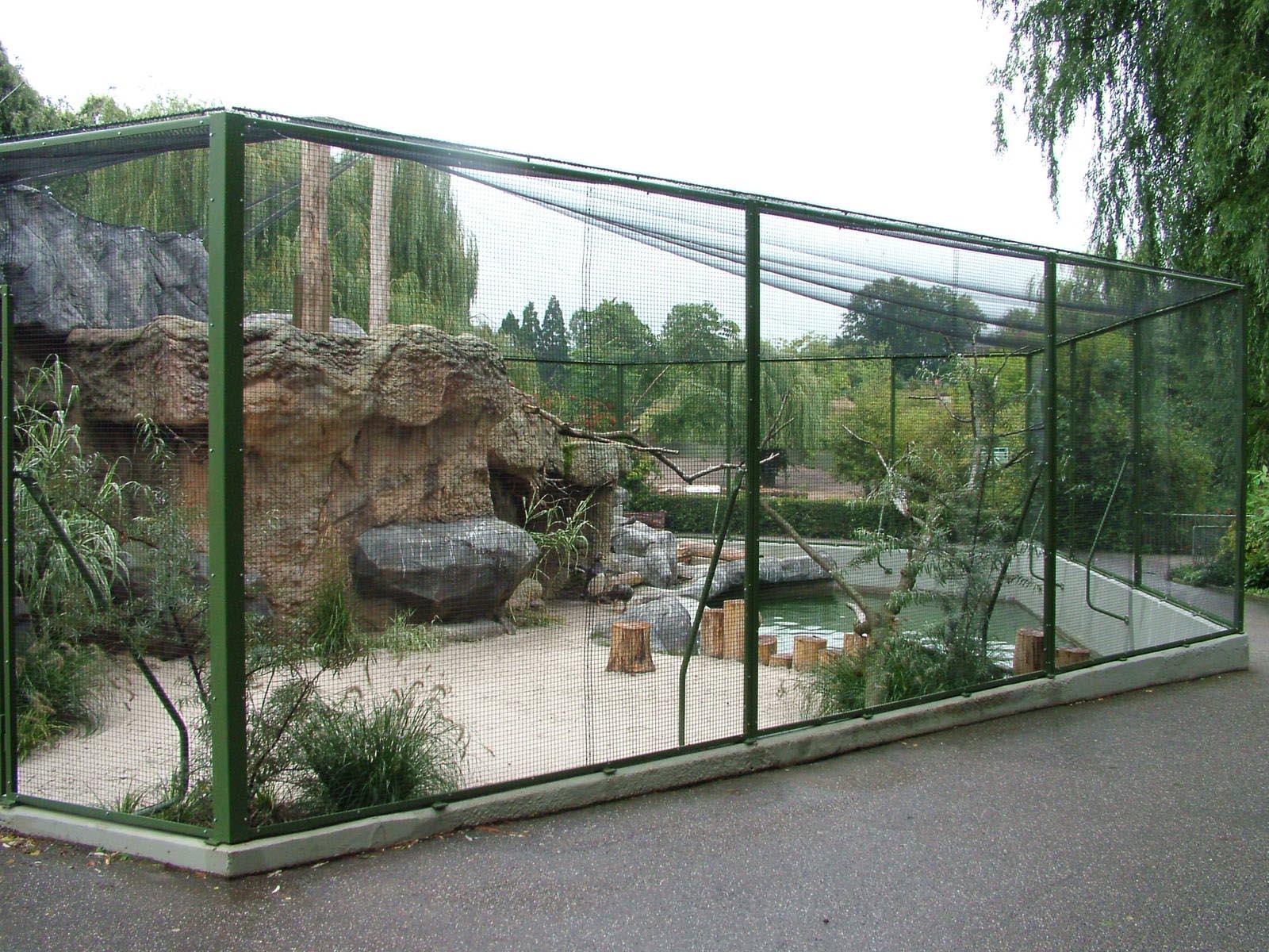 Bird Aviary Plans Free