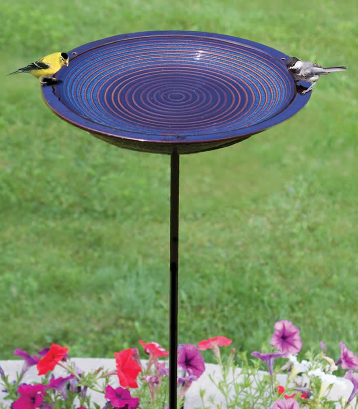Bird Bath for Hummingbirds