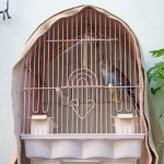 Bird Cage Cover DIY