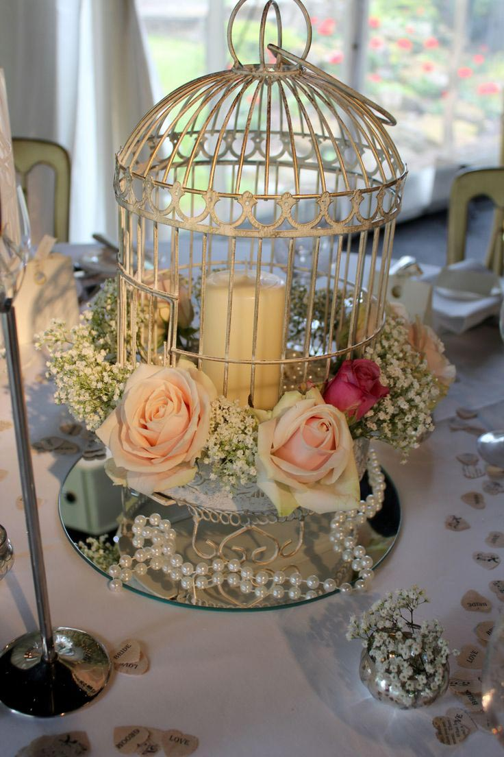 Bird Cage Decoration Ideas