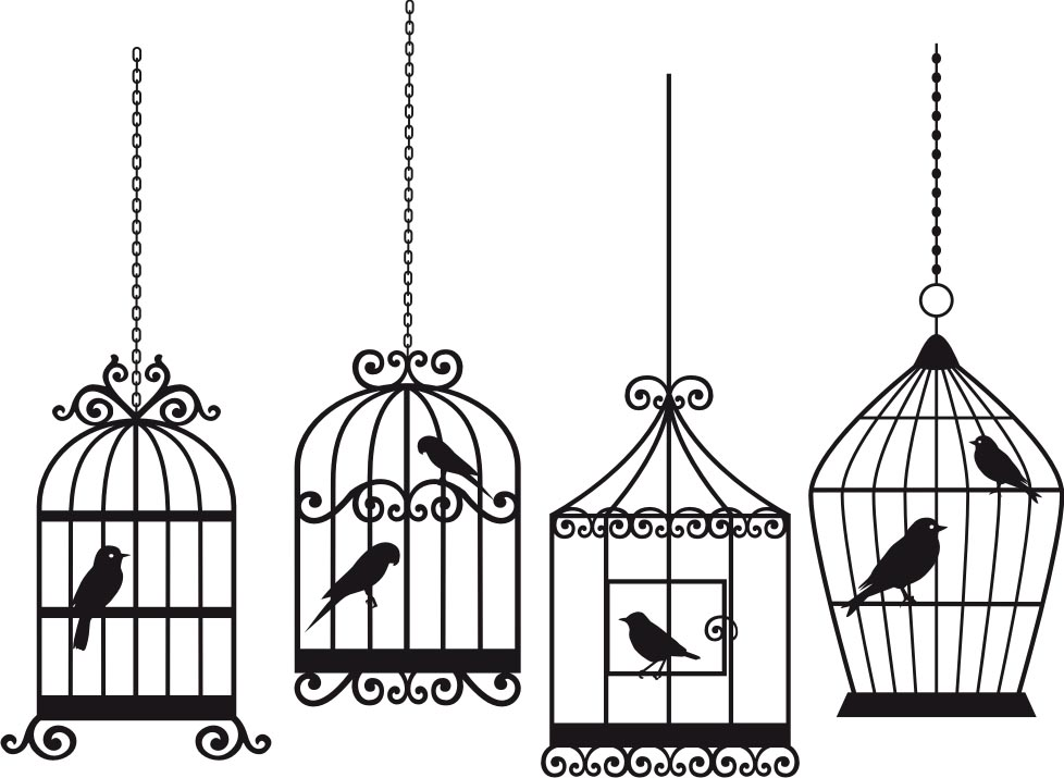 Bird Cage Line Drawing