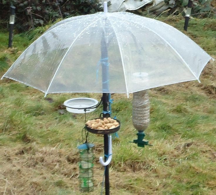 Bird Feeder Baffle DIY