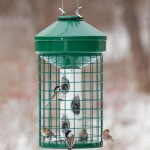 Bird Feeder Cage Large Birds