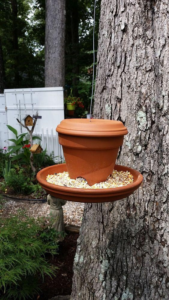 Bird Feeder Craft Kits