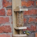 Bird Feeder DIY Plans