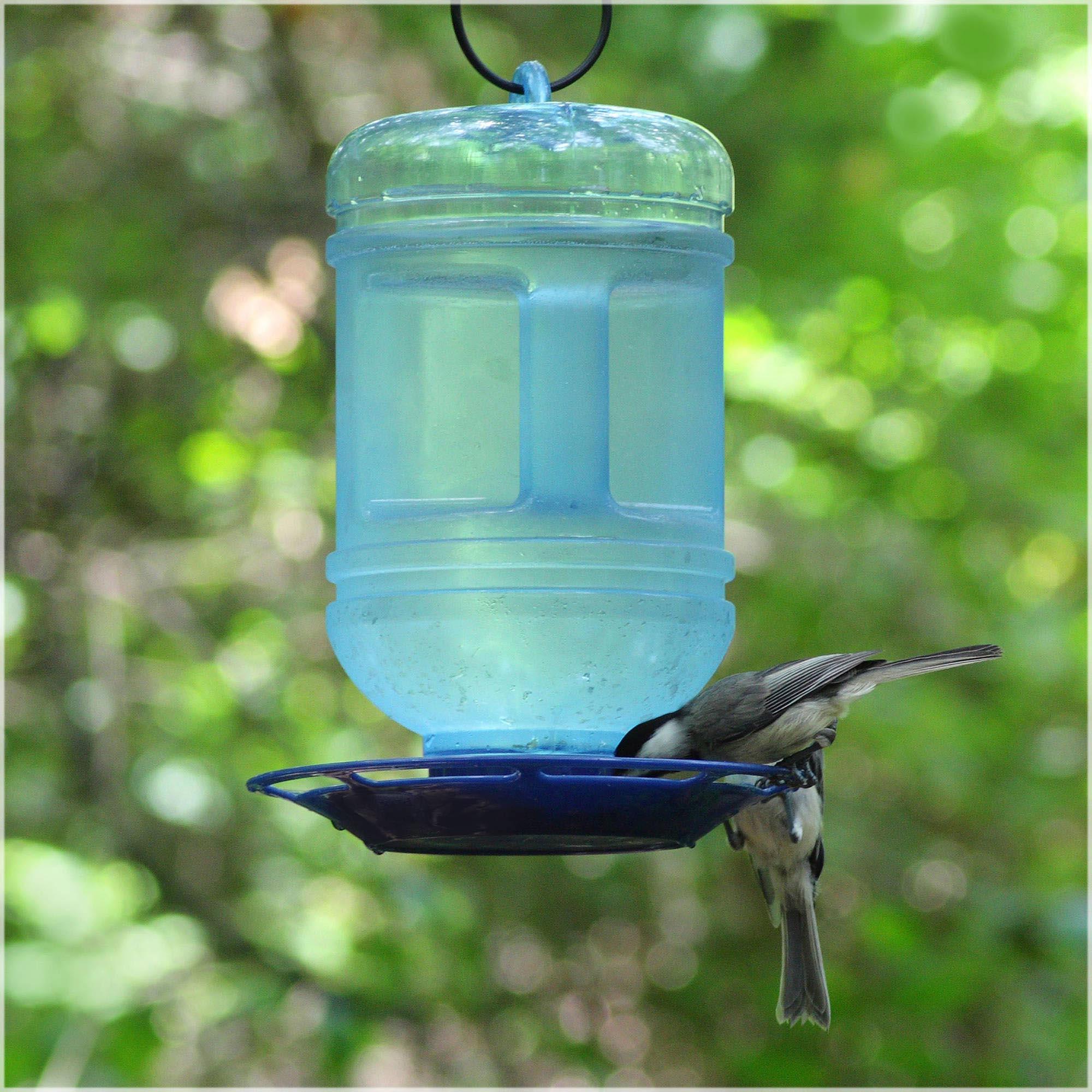 Bird Feeder from Water Bottle