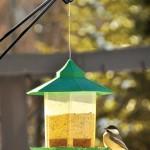 Bird Feeder Hangers Deck Railing