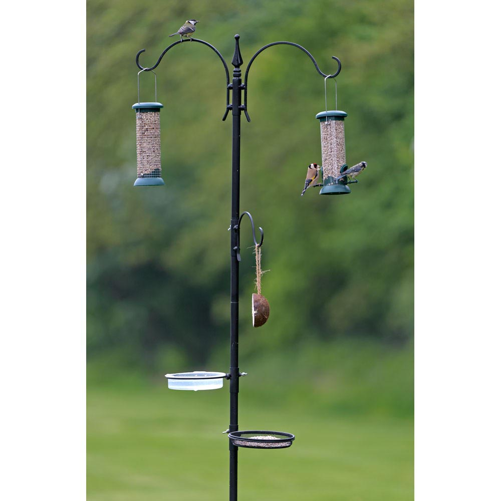 Bird Feeder on Stand