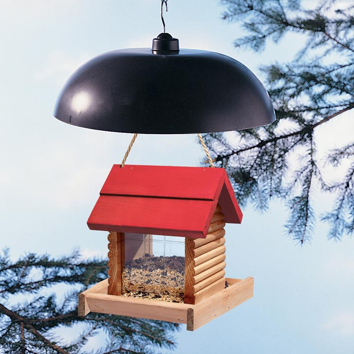 Bird Feeder Pole with Baffle