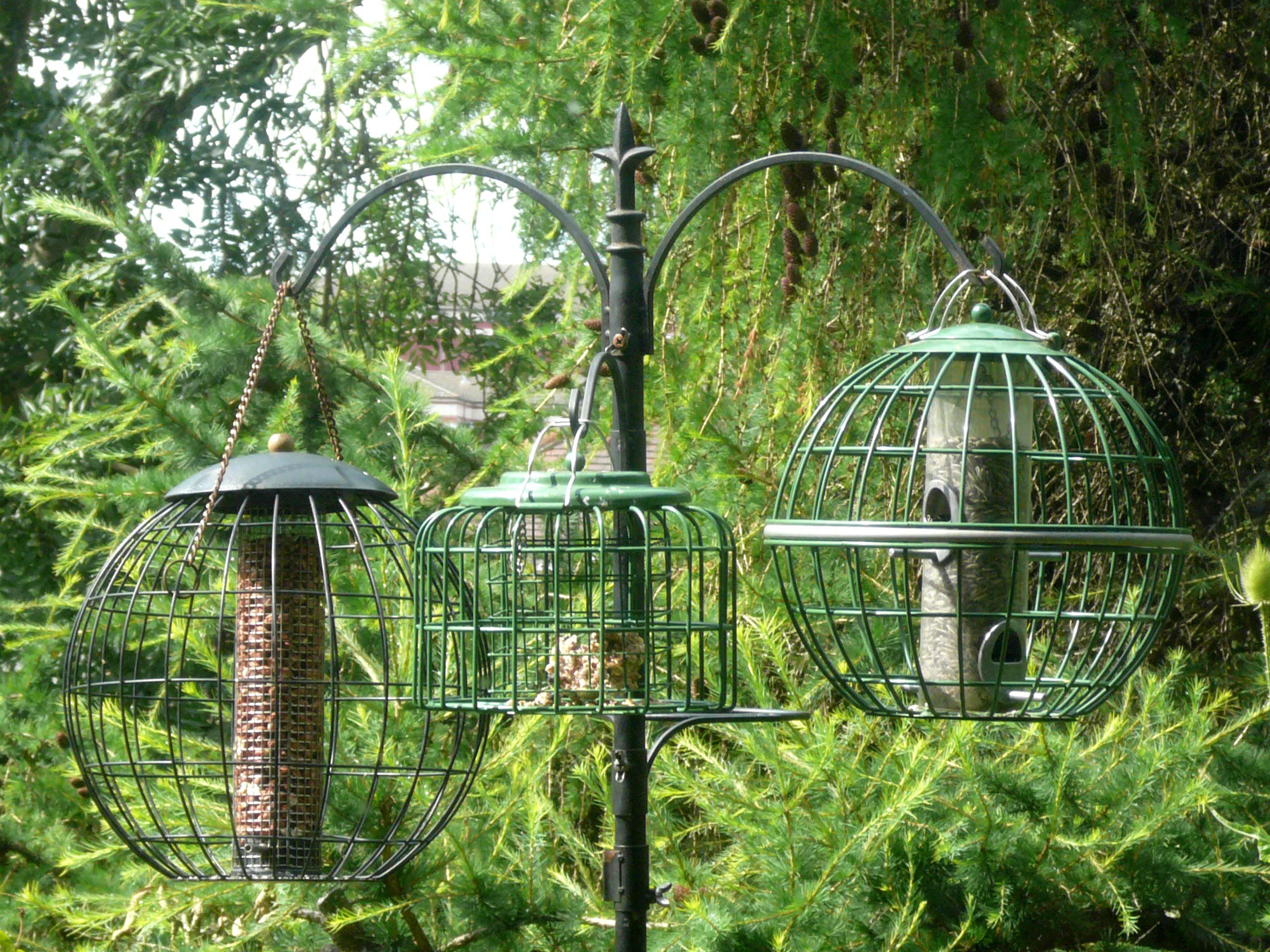 Bird Feeder Stand Squirrel Proof