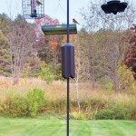 Bird Feeder Stands Iron