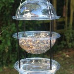 Bird Feeder Water Dish