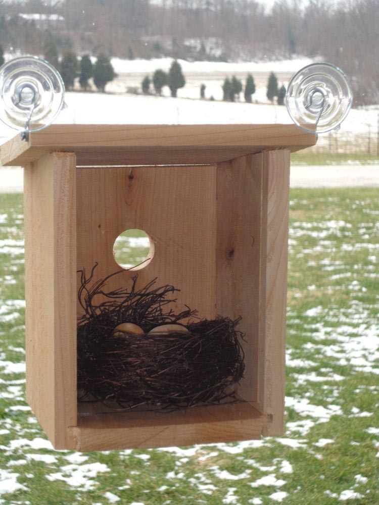Bird House Glass Window