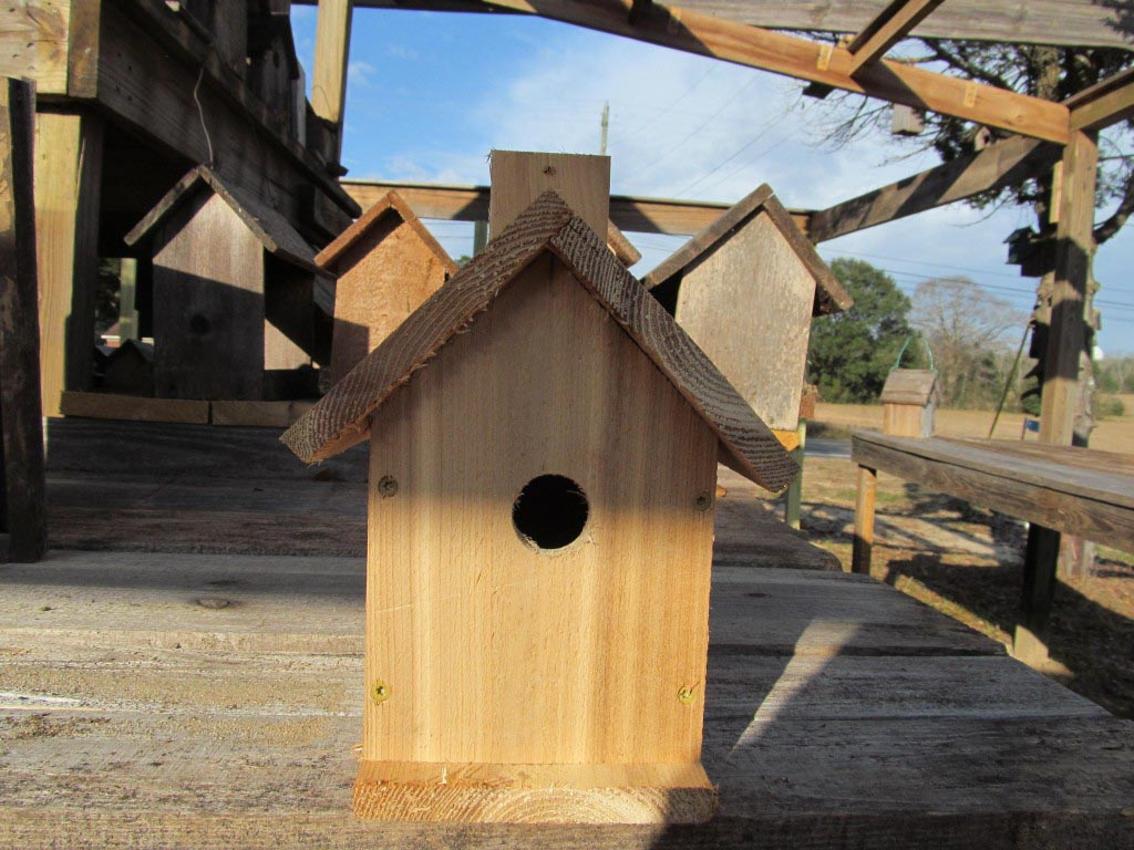 Bird Houses for Carolina Wrens