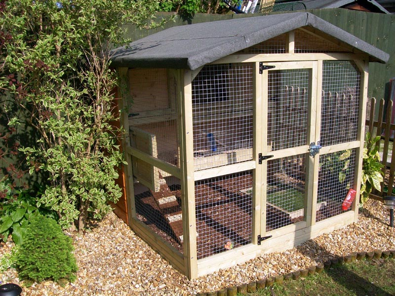 Bird of prey aviary plans birdcage design ideas for Chicken enclosure ideas