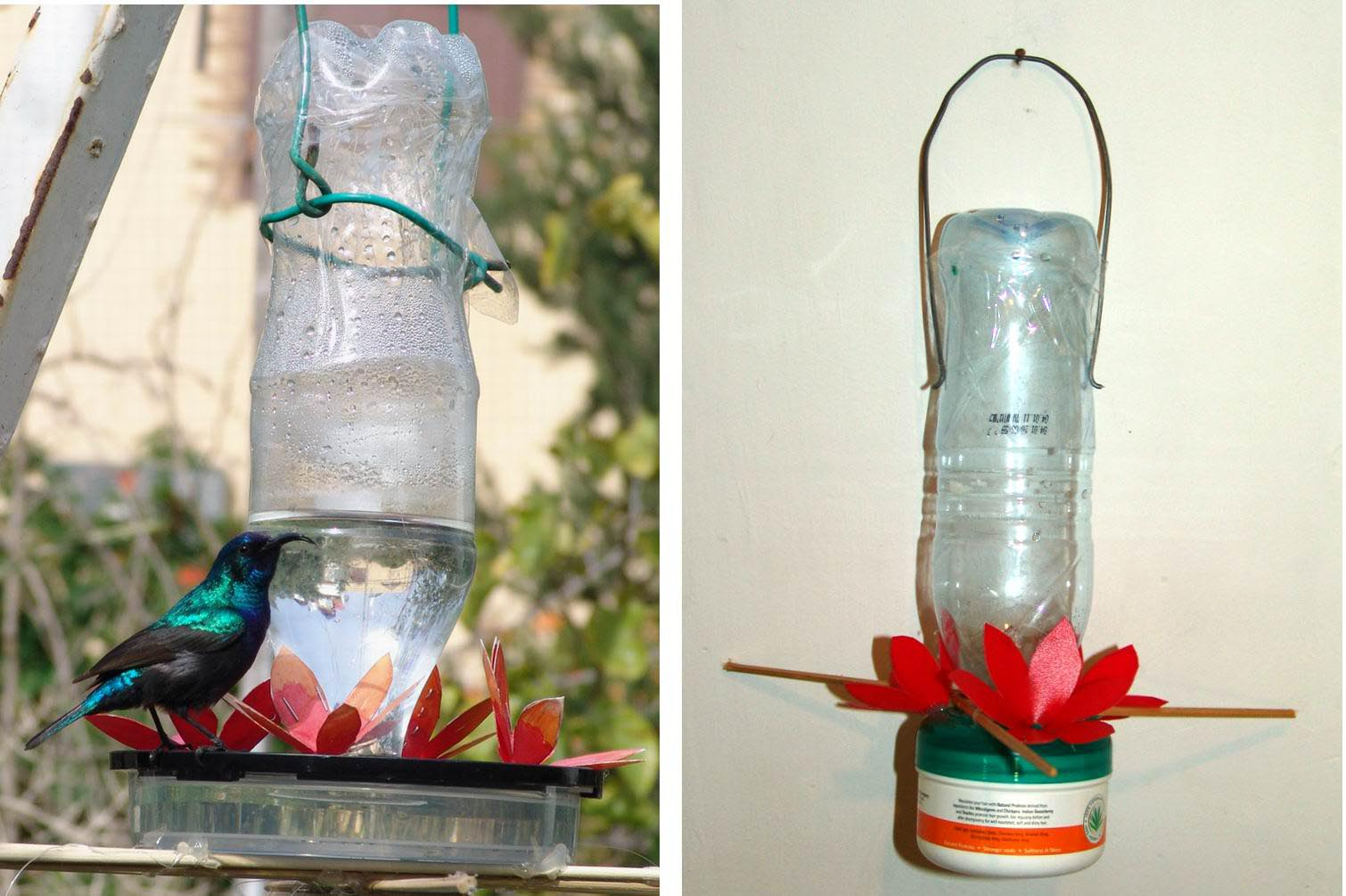 Bird Water Feeder DIY