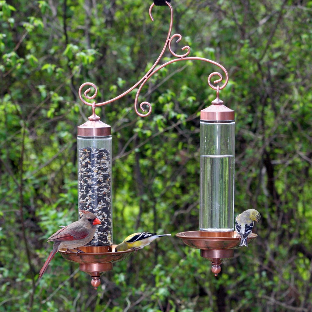 Bird Water Feeders Outdoor