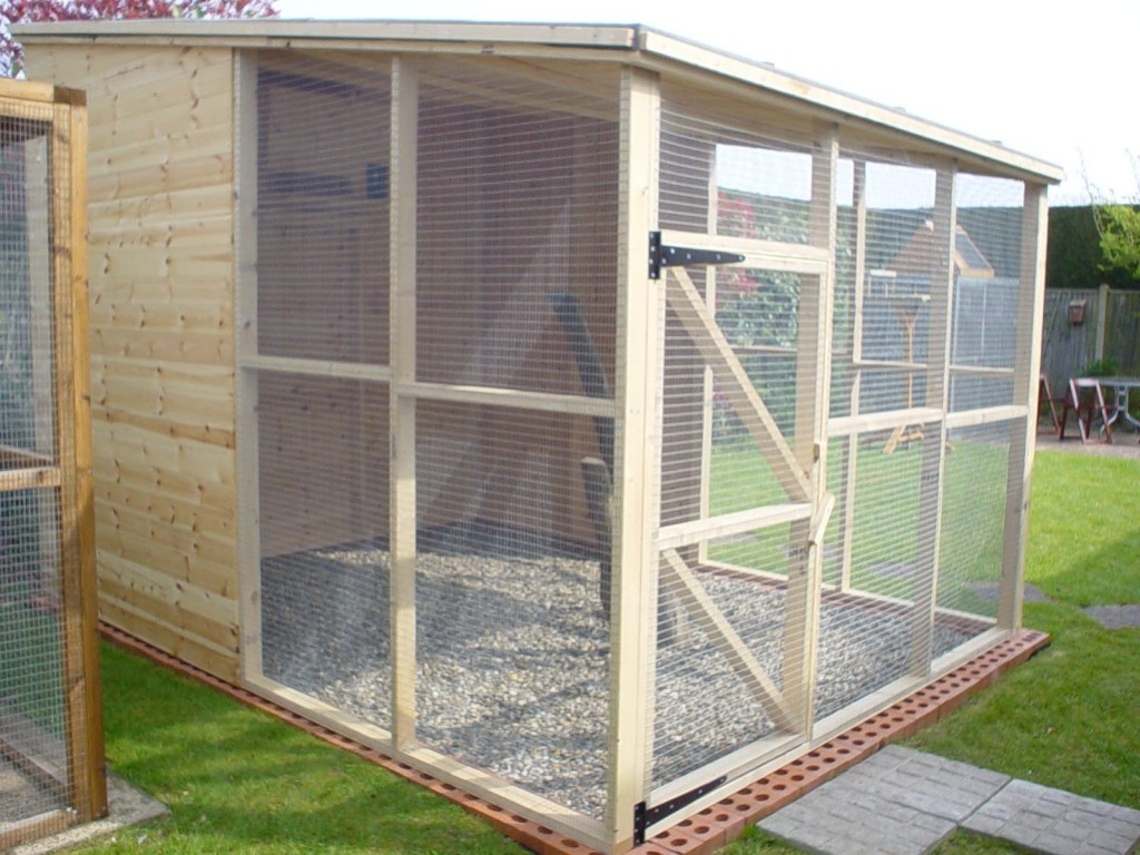 Birds for Outdoor Aviaries