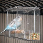 Build Acrylic Bird Cage
