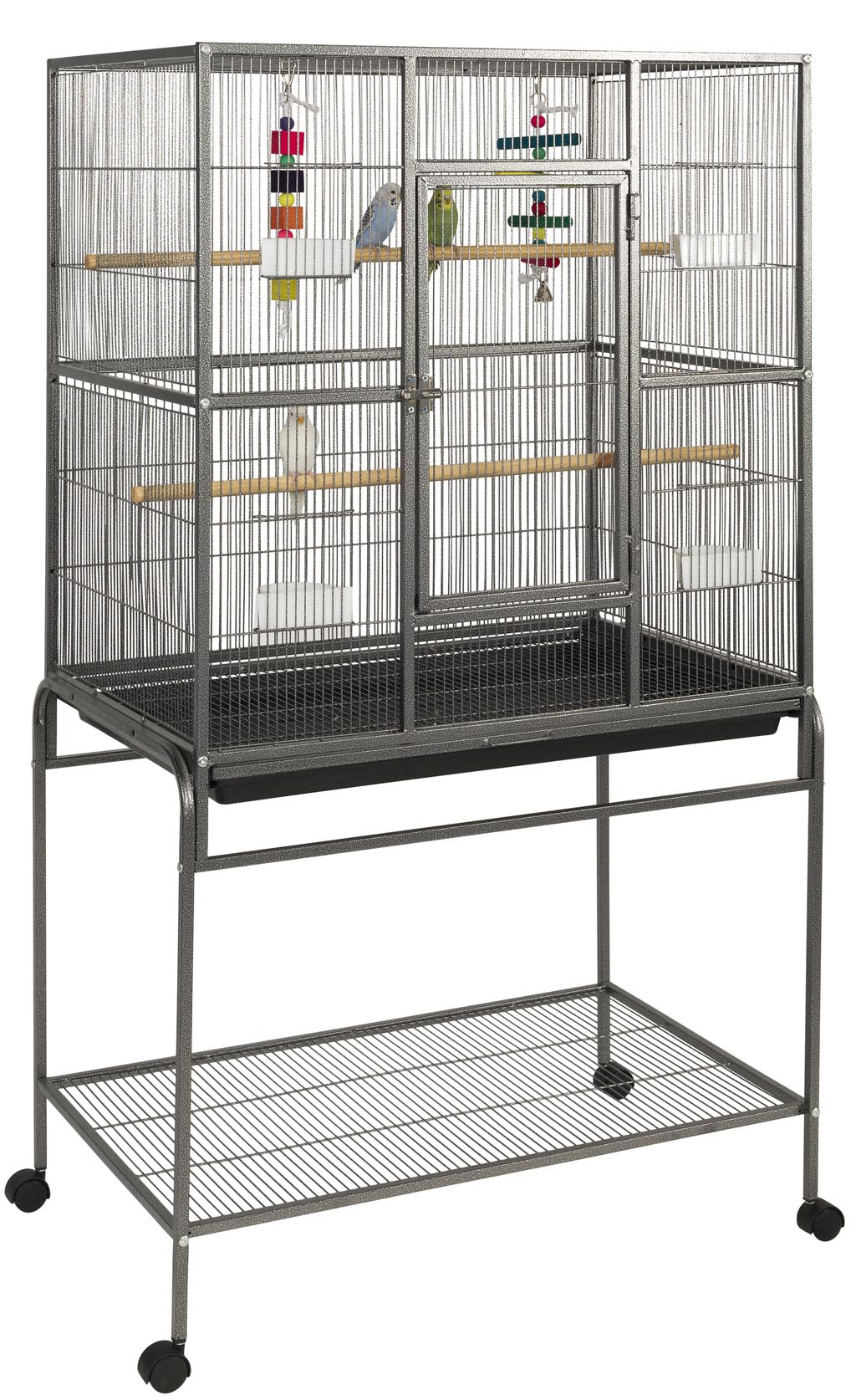 Cage and Aviary Bird