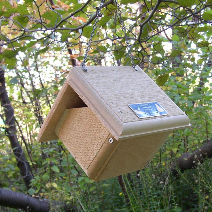 Carolina Wren Bird Houses