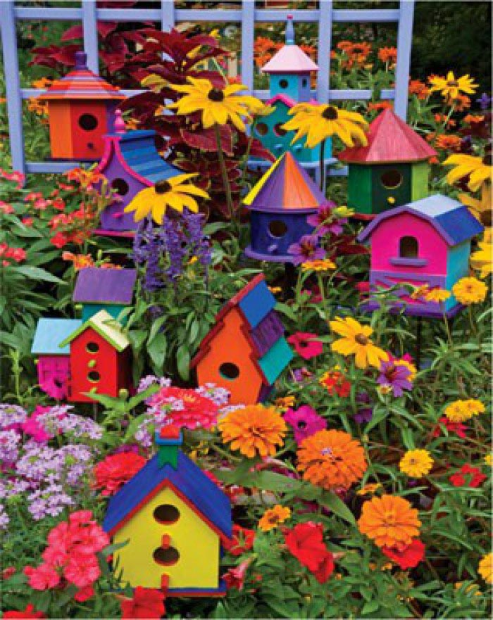 Colorful Wooden Bird Houses