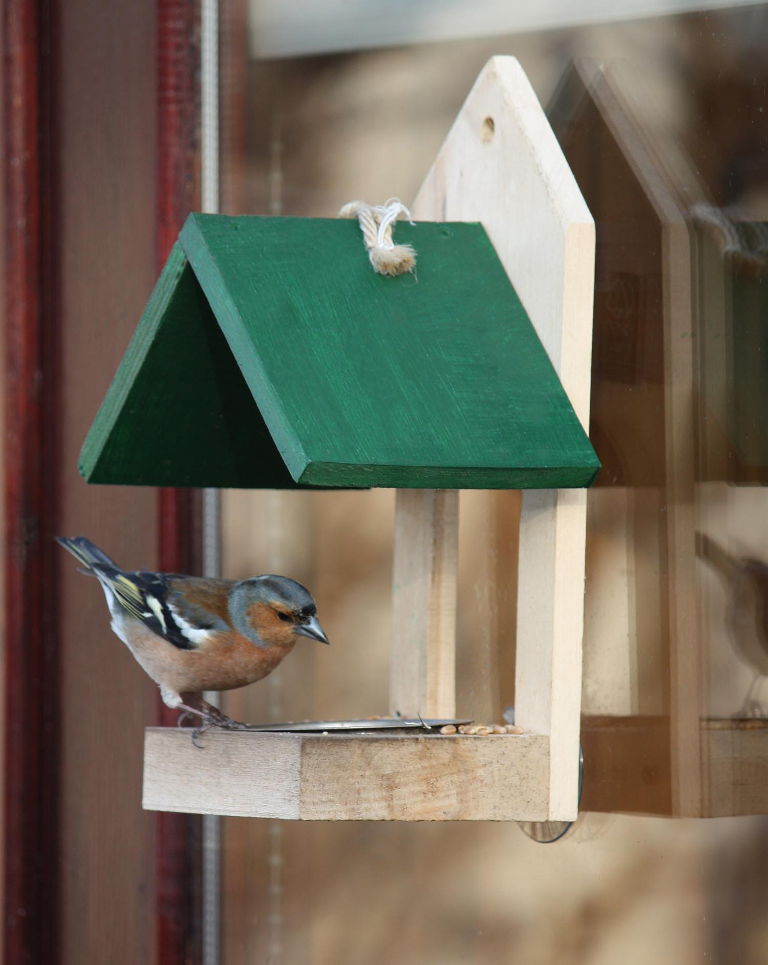 Cool Bird Feeder Ideas