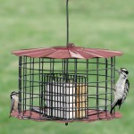 Copper Squirrel Proof Bird Feeder