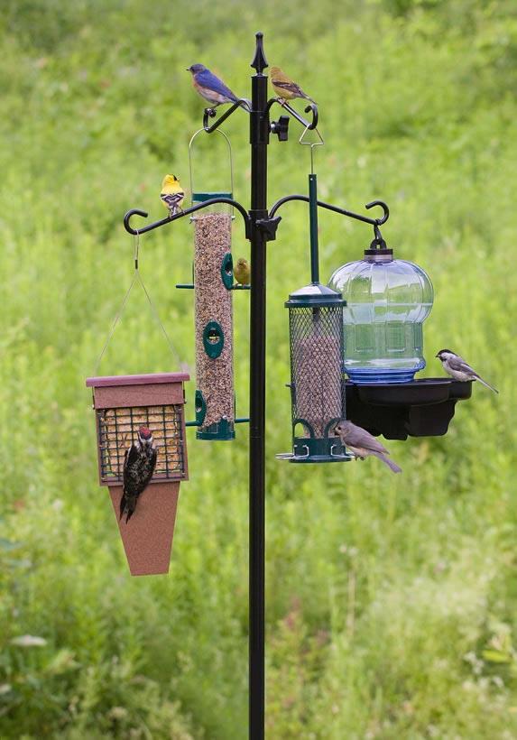 Deluxe Bird Feeder Station