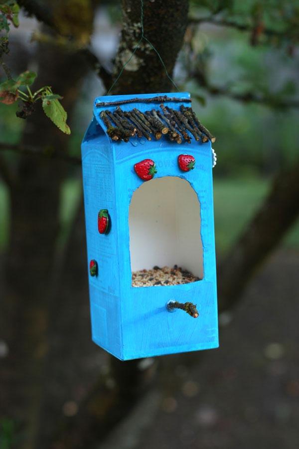 DIY Bird Feeder Kit