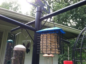 DIY Bird Feeder Pole