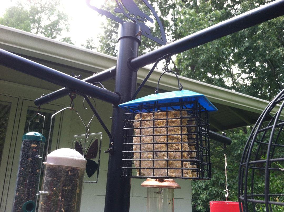 DIY Bird Feeder Pole
