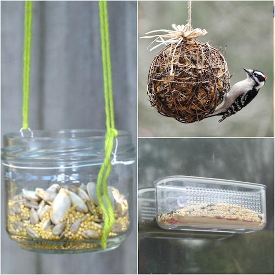 DIY Bird Feeder Station