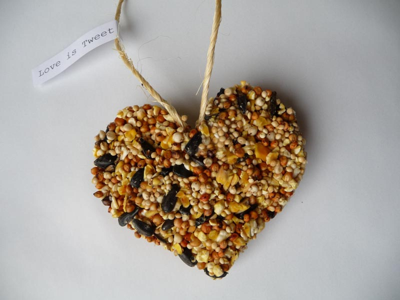 DIY Bird Seed Feeders
