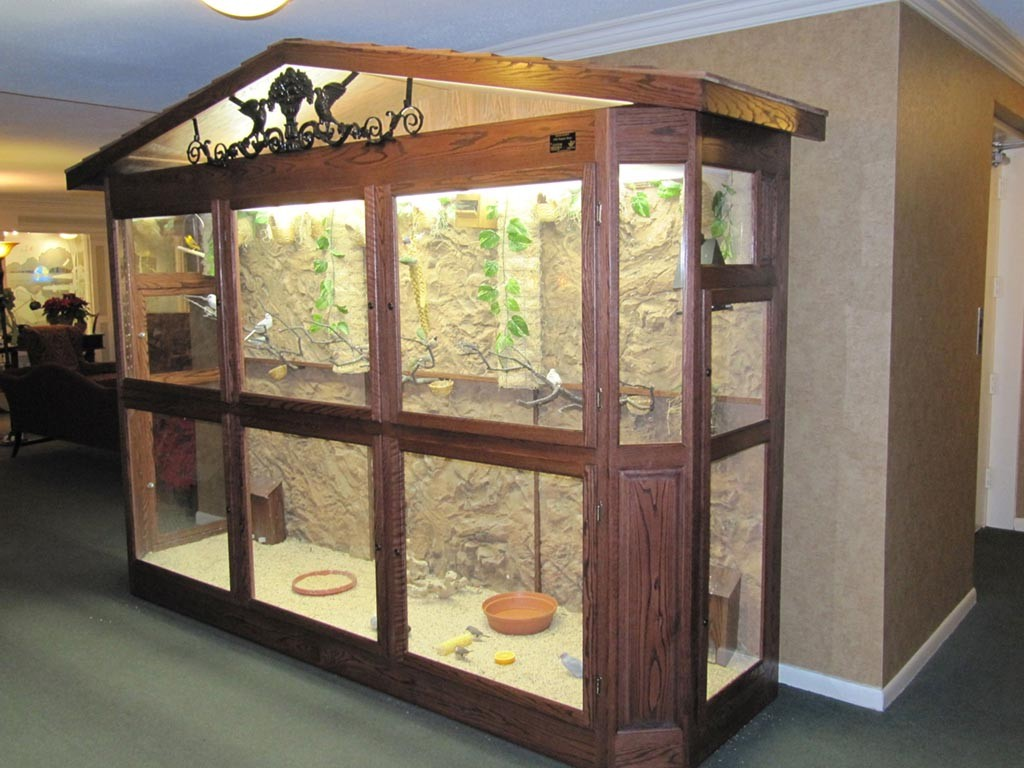 DIY Indoor Bird Aviary