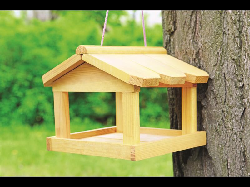 Diy wooden bird house birdcage design ideas for Simple birdhouse