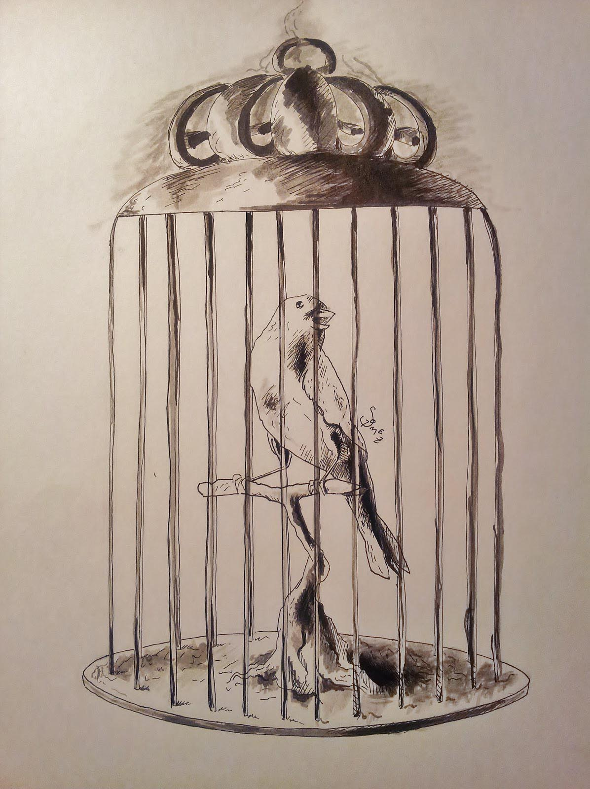 Drawing of a Bird Cage