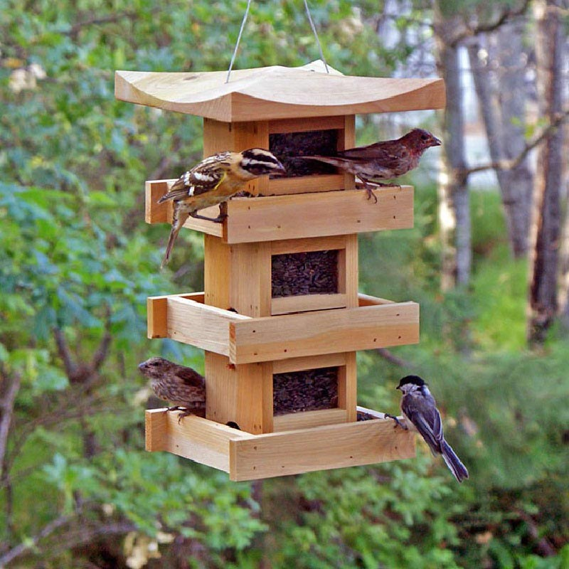 Finch Bird Feeder Plans