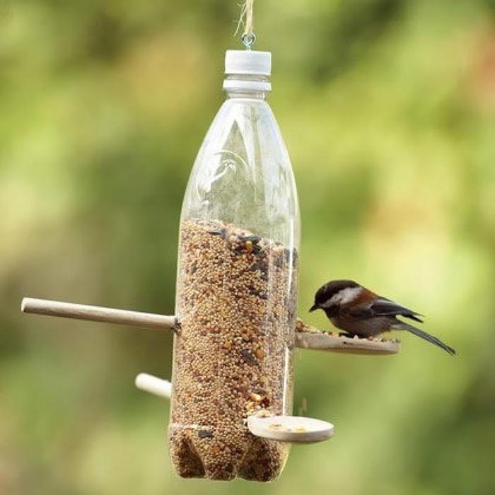 Finch Bird Feeders Homemade