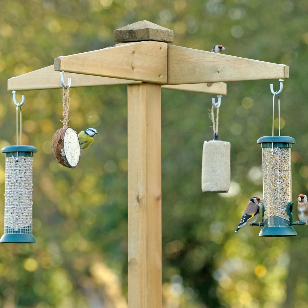 Free Standing Bird Feeder Station