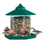 Gazebo Bird Feeder Kits