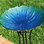 Glass Bird Bath Bowl Replacement