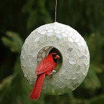 Glass Globe Bird Feeder
