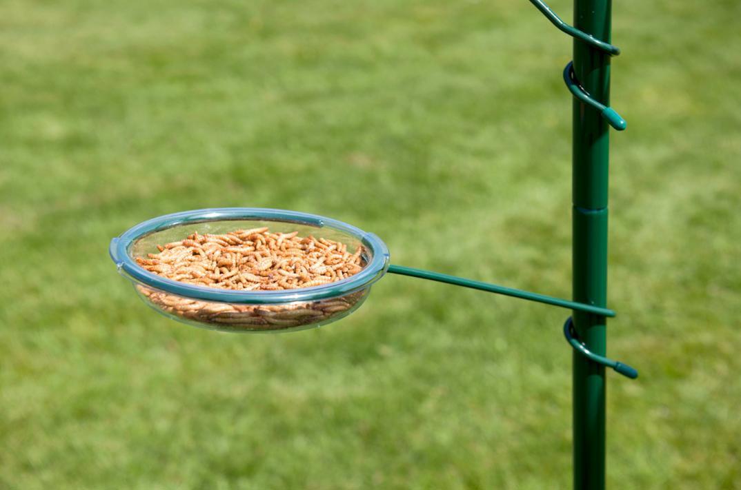 Hangers for Bird Feeders