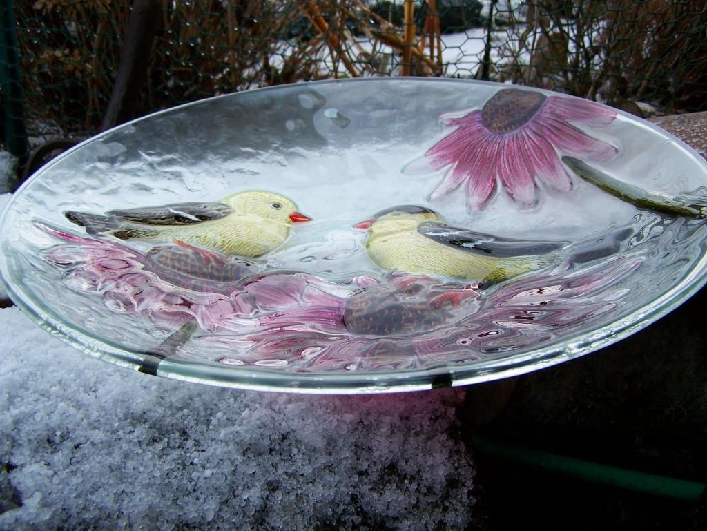 Hanging Bird Bath Glass