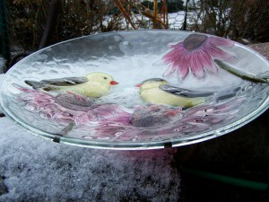 Hanging Bird Bath Glass